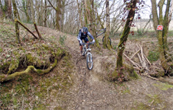 cycles et nature : magasin de vente et de reparation de velo a bordeaux, bmc supertrail st01 test